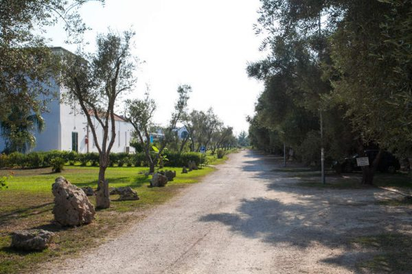 residence-blumare-village (7)